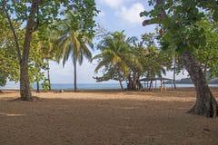 Καραϊβική παραλία στη Γουαδελούπη Στοκ εικόνες με δικαίωμα ελεύθερης χρήσης