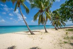 Καραϊβική παραλία Στοκ εικόνα με δικαίωμα ελεύθερης χρήσης