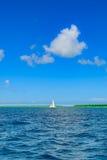 Καραϊβικός ήλιος στο μπλε ουρανό Στοκ φωτογραφία με δικαίωμα ελεύθερης χρήσης