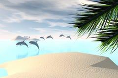 καραϊβικός διανυσματική απεικόνιση