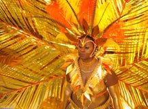καραϊβικό carnivale 9 Στοκ εικόνα με δικαίωμα ελεύθερης χρήσης