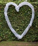 Καρδιά αγάπης πέρα από τον πράσινο κισσό Στοκ εικόνα με δικαίωμα ελεύθερης χρήσης