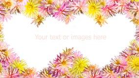 καρδιά δύο λουλουδιών Στοκ φωτογραφίες με δικαίωμα ελεύθερης χρήσης