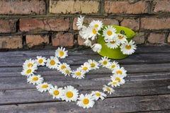 Καρδιά και ανθοδέσμη των chamomile λουλουδιών σε μια ξύλινη επιφάνεια Στοκ φωτογραφίες με δικαίωμα ελεύθερης χρήσης