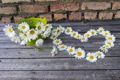 Καρδιά και ανθοδέσμη των chamomile λουλουδιών σε μια ξύλινη επιφάνεια Στοκ φωτογραφία με δικαίωμα ελεύθερης χρήσης