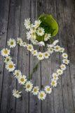 Καρδιά και ανθοδέσμη των chamomile λουλουδιών Στοκ Φωτογραφία