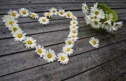 Καρδιά και ανθοδέσμη των chamomile λουλουδιών Στοκ φωτογραφία με δικαίωμα ελεύθερης χρήσης