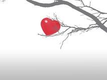 καρδιά κλάδων Στοκ Εικόνες