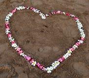 Καρδιά λουλουδιών στην παραλία Στοκ Εικόνες