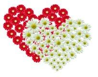 καρδιά λουλουδιών Στοκ Εικόνες
