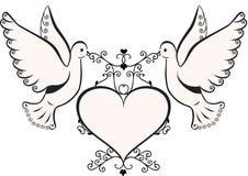 καρδιά πλαισίων περιστερ& Στοκ εικόνα με δικαίωμα ελεύθερης χρήσης