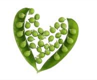 Καρδιά πράσινων μπιζελιών στοκ εικόνες
