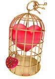 Καρδιά σε ένα χρυσό κλουβί Στοκ Φωτογραφία