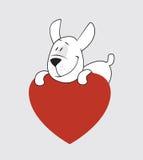 καρδιά σκυλιών Στοκ φωτογραφίες με δικαίωμα ελεύθερης χρήσης
