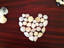 Καρδιά φιαγμένη από θαλασσινά κοχύλια σε ένα καφέ ξύλινο υπόβαθρο στοκ φωτογραφία