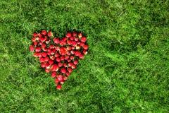 Καρδιά φιαγμένη από φράουλες σε έναν πράσινο χορτοτάπητα Στοκ φωτογραφία με δικαίωμα ελεύθερης χρήσης
