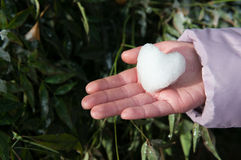 Καρδιά χιονιού Στοκ εικόνα με δικαίωμα ελεύθερης χρήσης