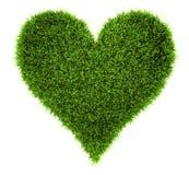 καρδιά χλόης Στοκ εικόνες με δικαίωμα ελεύθερης χρήσης