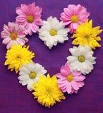 καρδιά χρωμάτων Στοκ φωτογραφία με δικαίωμα ελεύθερης χρήσης