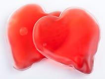 καρδιές δύο αίματος στοκ φωτογραφία με δικαίωμα ελεύθερης χρήσης