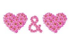 καρδιές λουλουδιών Στοκ εικόνα με δικαίωμα ελεύθερης χρήσης