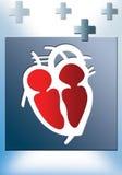 καρδιολογία Διανυσματική απεικόνιση