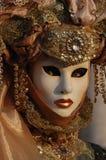 Καρναβάλι Βενετία 2 Στοκ φωτογραφία με δικαίωμα ελεύθερης χρήσης