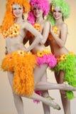 καρναβάλι Στοκ φωτογραφίες με δικαίωμα ελεύθερης χρήσης