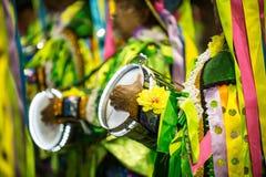 Καρναβάλι 2014 - Ρίο ντε Τζανέιρο στοκ φωτογραφία με δικαίωμα ελεύθερης χρήσης