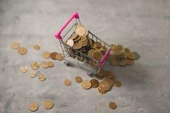 Καροτσάκι αγορών με τα νομίσματα Στοκ Εικόνες