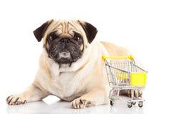 Καροτσάκι αγορών σκυλιών μαλαγμένου πηλού που απομονώνεται στο άσπρο υπόβαθρο Αγοραστής Στοκ εικόνα με δικαίωμα ελεύθερης χρήσης