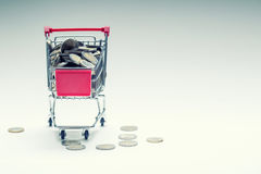 Καροτσάκι αγορών τρισδιάστατες παραγμένες κάρρο αγορές εικόνας Σύνολο καροτσακιών αγορών των ευρο- χρημάτων - νομίσματα - νόμισμα Στοκ Εικόνες