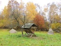 Καρπάθια βουνά στα χρώματα φθινοπώρου στοκ εικόνα