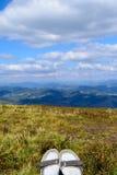 Καρπάθια βουνά στο θερινό χρόνο Στοκ εικόνες με δικαίωμα ελεύθερης χρήσης