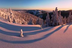 Φανταστικό χειμερινό τοπίο βραδιού και πρωινού Ζωηρόχρωμος συννεφιάζω ουρανός Παγκόσμιο μαγικό χιονισμένο δέντρο ομορφιάς Πρώτο χ στοκ φωτογραφία με δικαίωμα ελεύθερης χρήσης