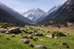 Καρπάθια κοιλάδα της Ουκρανίας βουνών Στοκ Εικόνες