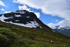 Καρπάθια κοιλάδα της Ουκρανίας βουνών Στοκ Εικόνα