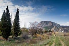 Καρπάθια κοιλάδα της Ουκρανίας βουνών Στοκ Φωτογραφίες