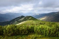 Καρπάθια κοιλάδα της Ουκρανίας βουνών Στοκ Φωτογραφία