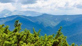 Καρπάθιοι λόφοι βουνών στοκ φωτογραφία με δικαίωμα ελεύθερης χρήσης