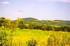 Καρπάθιοι λόφοι στην Ουκρανία Στοκ Εικόνες