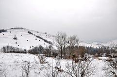 Καρπάθιος χειμώνας βουνώ& Στοκ φωτογραφία με δικαίωμα ελεύθερης χρήσης