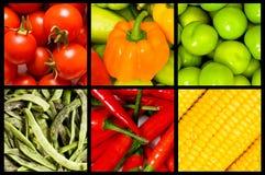 καρποί κολάζ πολλά λαχαν&i Στοκ Εικόνες