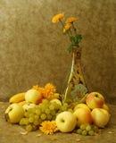 καρποί λουλουδιών Στοκ Εικόνα