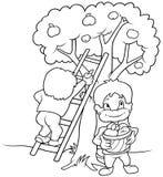 καρποί παιδιών που συγκ&omicro διανυσματική απεικόνιση