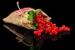 Καρποί των κόκκινων σταφίδων σε ένα σκοτεινό υπόβαθρο Στοκ Εικόνες