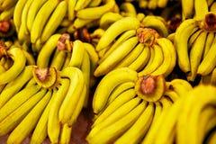 καρποί Ώριμες μπανάνες στην αγορά Υγιή ακατέργαστα πλούσια τρόφιμα καλίου Στοκ Εικόνες