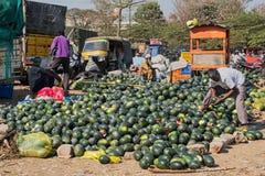 Καρπούζια στην πώληση σε Mysuru, Ινδία Στοκ Εικόνες
