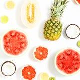 Καρπούζι σχεδίων φρούτων, ανανάς, γκρέιπφρουτ, καρύδα, ακτινίδιο, Στοκ Εικόνες