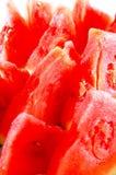 καρπούζι χοντρών κομματιών Στοκ φωτογραφία με δικαίωμα ελεύθερης χρήσης